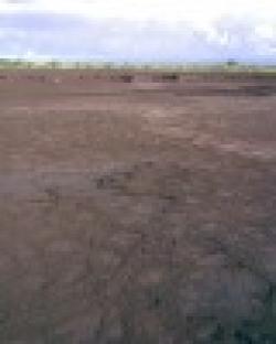 Philippines iron fines sand