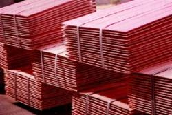 Tanzania Copper Cathodes 99.99%