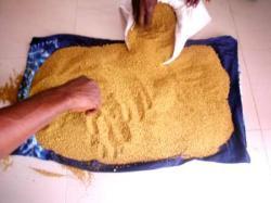 Sierra Leone We selle Gold Dust