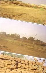 Guinea ##f_title_clear##