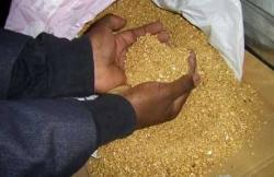 We have high quality rough diamonds, gold dust