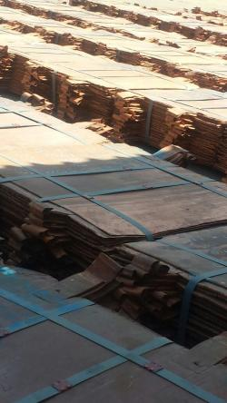 Top Quality Copper Cathodes (99,99%) For Sale