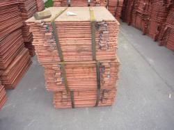Elctrolytic Copper cathode needed on CIF  terms