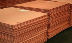 Offer required for copper cathode