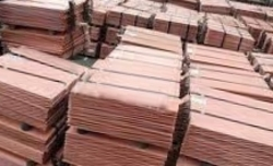 Copper cathodes needed 10,000MT a month, 1000t trial order, CIF