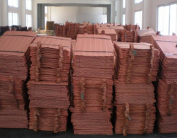 Copper Cathode supplies, 3000 Ton per month, for 12 month contract.
