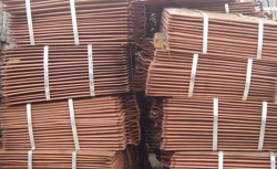 Copper cathodes supplies