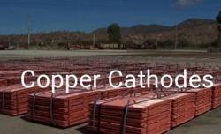 Supplying Copper Cathodes CIF