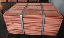 Copper Cathode Grade A 99,99% CIF MOQ 1000mt