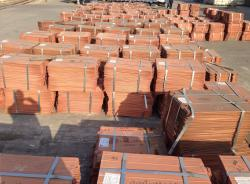 Copper cathodes on FOB