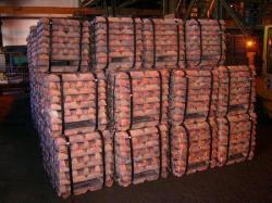 Copper Ingots supply