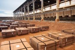 Copper cathodes 5,000 MT/month 2% PB