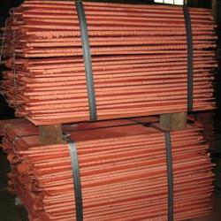 Copper Cathodes needed