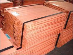 Copper Cathodes 99,99% 1000 mt trial CIF