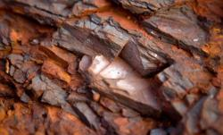 50,000 MT of iron ore on FOB offered