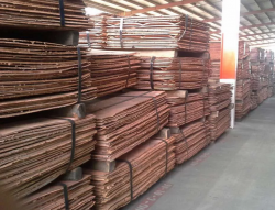 Need detailed offer for 5000 MT of copper cathodes