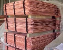 Copper cathode 1000-20,000 mt/m CIF