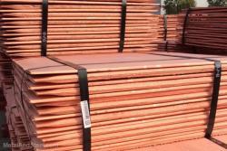 Need 5,000 MT/m of copper cathodes