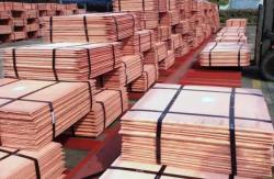 Copper Cathode 1,000 MT CIF needed