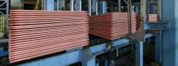 We need 5,000 MT Copper Cathodes