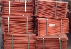Copper cathodes 500 mt trial, 5-10,000 mt/m CIF needed