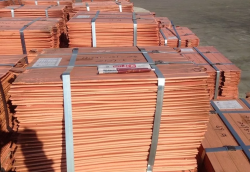 Looking for 2,000 mt/m of Copper cathodes