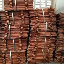 Copper Cathode 100,000 mt/m