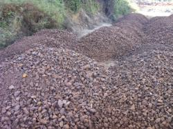 Iron ore >62% 50,000 mt/m