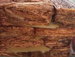 Looking for copper scrap to Dubai, CIF