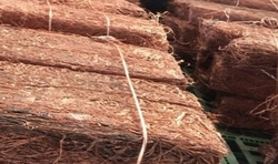 Copper wire scrap 99.99% needed