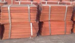 Purchase of copper cathodes to Korea