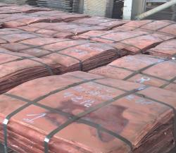 Looking for Copper Cathode supply