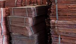 Supply Of Copper Cathode, CIF any port
